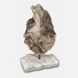 Pépite : the roc